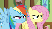 Fluttershy and Rainbow glaring at Zephyr S6E11