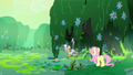 Fluttershy and Zecora in the swamp S7E20.png