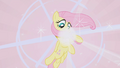 Fluttershy gets her necklace S01E02.png