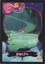 Mirror Pool Enterplay trading card