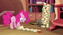 Pinkie Pie perusing genealogy scroll S4E09