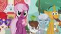 Ponies pleased by Diamond's decision S5E18.png