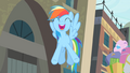 Rainbow '...the best musical in all of Equestria!' S4E08.png