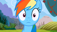 Rainbow Dash eyes shrink S2E15