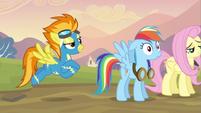 S02E22 Spitfire chwali zaskoczoną Dash