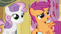 Scootaloo --we'll totally solve them-- S6E4