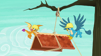 Smolder and Gallus move roof to the right S8E9