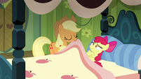 Applejack pulling Apple Bloom's blanket S5E04