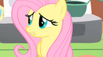 Fluttershy don't break S1E17