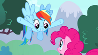 "Rainbow ""you're Ponyville's permanent party pony"" S4E12"