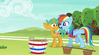 Rainbow --one step closer to crushing Appleloosa!-- S6E18