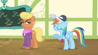 Rainbow Dash -quite, quite correct- S4E05