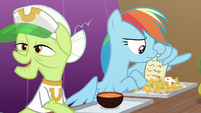 Rainbow Dash looking at the rules again S8E5