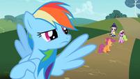 Rainbow Dash sees Scootaloo walking away S2E08