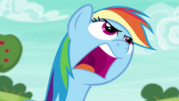 "Rainbow Dash shouting ""come on!"" S6E18"