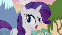 Rarity -maybe not the most important thing- S4E03