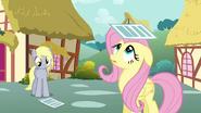 S02E22 Derpy i Fluttershy