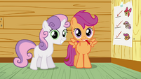 Scootaloo and Sweetie Belle smile S3E04