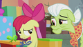 Apple Bloom under Granny's disapproving gaze S5E20.png