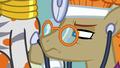 Dr. Horse disturbed by Zecora's heartbeat S7E20.png