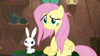 Fluttershy and Angel smiling at Zecora S9E18
