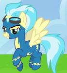 Misty Fly ID