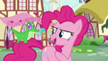 "Pinkie ""Did you take that from Pound Cake again?"" S5E19.png"