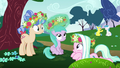 Ponies and Aura playing with flowers S6E6.png