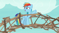 "Rainbow ""why didn't I think of branches"" S8E9"