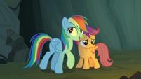 Rainbow Dash -practically- S7E16