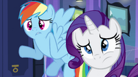 Rainbow and Rarity -what are hands-- EG