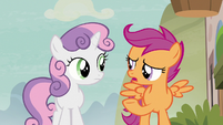 "Scootaloo ""what about Cheerilee?"" S7E8"