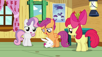 Angel hugging Scootaloo's legs S3E11