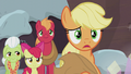 "Applejack ""the same traditions right away"" S5E20.png"