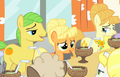 Applejack and the Oranges - S1E23.png
