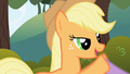 Applejack introduces herself S1E01.png