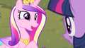 Cadance 'I enjoy a little excitement now and then' S4E11.png