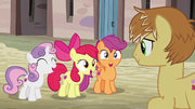 Cutie Mark Crusaders ''¡A tus ordenes!'' T7E8