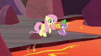 Fluttershy meets back up with Spike S9E9