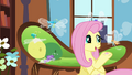 Fluttershy offering hoof-knitted sweater S4E16.png