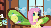 Fluttershy offering hoof-knitted sweater S4E16