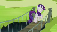 Rarity ecstatic S4E03