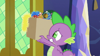 Spike carrying box of decorations MLPBGE
