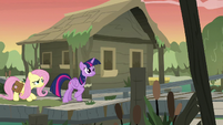 Twilight and Fluttershy enter the bayou village S7E20