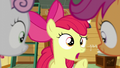 "Apple Bloom ""But bungee jumping sounds just as scary"" S6E4.png"