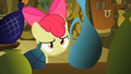 Apple Bloom 'bad back' S2E06.png