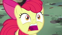 Apple Bloom surprised -twittermites!- S5E4