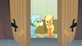 Applejack and Granny Smith enter surgery theater S6E23.png