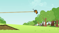 Butterfly having a tug of war S2E22