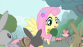 Fluttershy 'thank you so much' S4E14.png